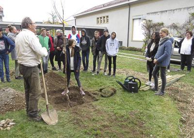 Projet Nature - Collège de Corsier